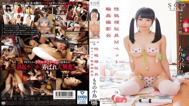 STAR-757 Kotori Morino Little Bird In The Forrest - Photoshoot Of Gang Banging The M Pet Sex Toys-SOD Create