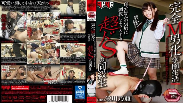 MANE-010 A Total Maso Man Domination School Life An Ultra Sadistic Classmate Is Breaking In A Schoolboy To Transform Him Into Her Kind Of Maso Slave Noa Eikawa