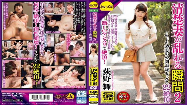 CEAD-132 Moment Neat Wife Is Disturbed 2 Mai Ogino