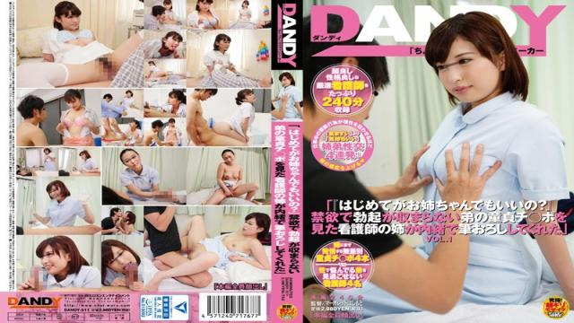 DANDY-511 The First Time The Sister Of Nurse Told Me To Brush Wholesale Secretly Saw The Virgin Ji _ Port Of Brother That Does Not Fit The Erection In A Good That? Abstinence Even Big Sister VOL.1