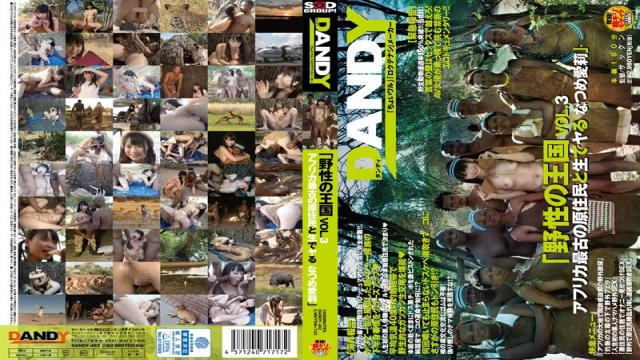 DANDY-462 Wild Kingdom VOL.3 Africas Oldest Natives And Live Do Natsume Airi