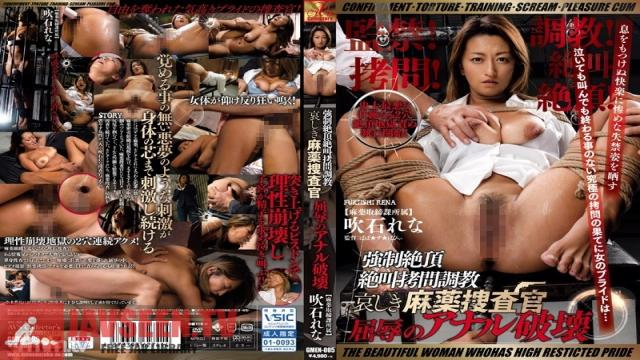 GMEN-005 Studio AVS collector's - Confinement! Torture! Breaking In! Scream With Pleasure! Ecstasy! Forced Orgasmic Scream-Filled Torture And Breaking In The Sad Fate Of The Narcotics Investigation Squad Shameful Anal Destruction Lena Fukiishi