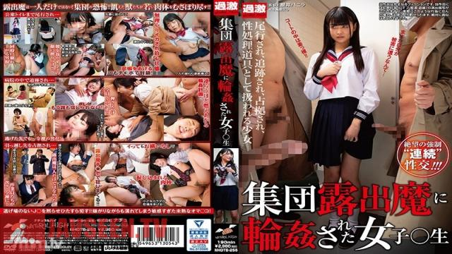 NHDTB-255 Studio NATURAL HIGH - A Sch**lgirl Who Got Gang Bang Fucked By An Exhibitionist Gang